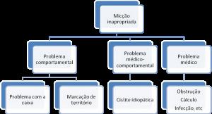 miccao-urina