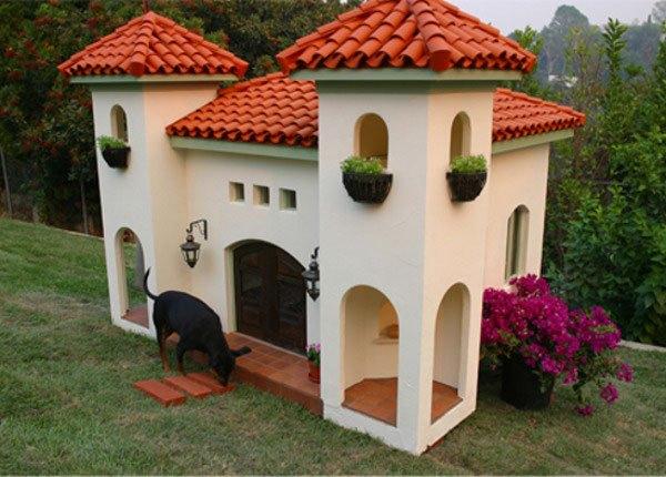 mansões de cachorro