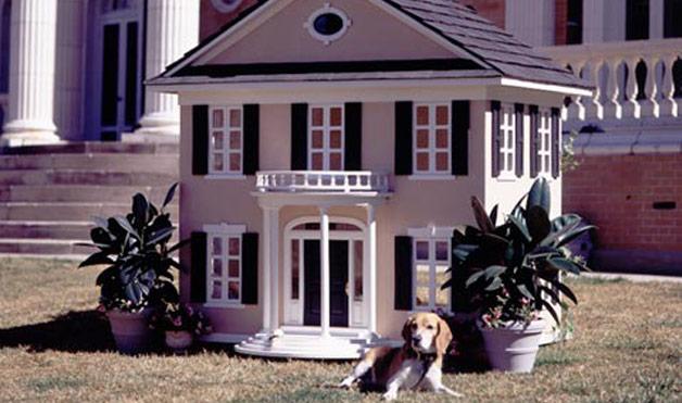 mansões para cachorro
