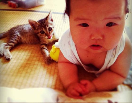 garotinha e seu gatinho