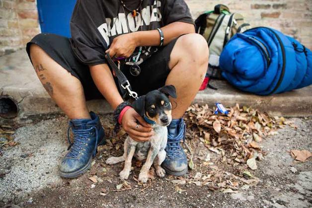 2 Amor entre moradores de rua e seus animais