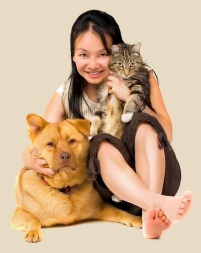 a1 Animais de estimação