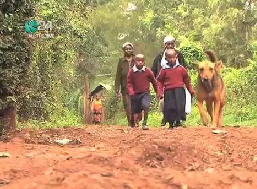 capa3 cachorra adota crianças