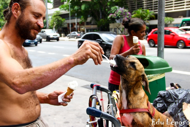 moradores de rua e seus cães 11